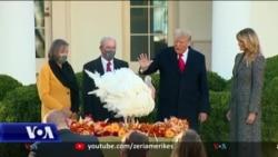 Trump, Biden me mesazhe drejtuar vendit për Ditën e Falenderimeve