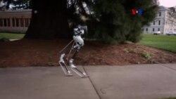 Robot que camina como humano sin tropezar