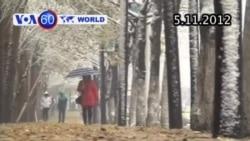VOA60 Thế Giới 05/11/2012