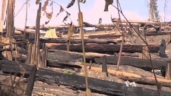 Rural Cambodians Angry Over Massive Logging Operations