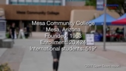 Forming a Second Family at Mesa Community College