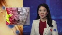 'Việt Nam giam tù chính trị nhiều nhất Đông Nam Á'