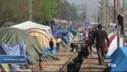 Mülteci Sayısı 2015'te Tarihin En Yüksek Seviyesine Ulaştı