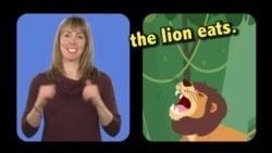 English in a Minute: Lion's Share