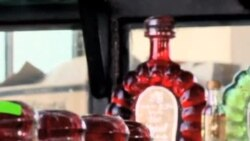 龙舌兰酒之乡的可再生能源项目