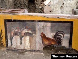 A fresco depicting two ducks and a rooster on an ancient counter discovered during excavations in Pompeii, Italy, is seen in this handout picture released Dec. 26, 2020.