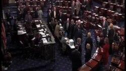Ovaj tjedan u Washingtonu: o imigraciji i o kontroli oružja