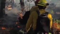 California'da Yangın Mevsimi Başladı