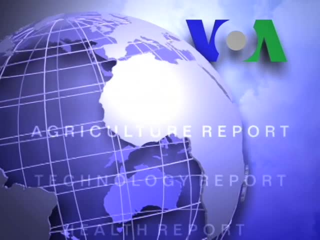 Anh ngữ đặc biệt: Chinese Students (VOA)