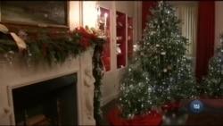 До капітолії привезли Різдвяну ялинку. Відео
