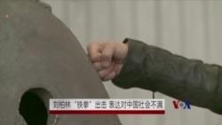"""刘伯林""""铁拳""""出击 表达对中国社会不满"""