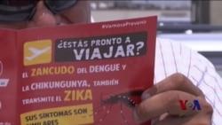 世卫组织寻求全球应对寨卡病毒爆发