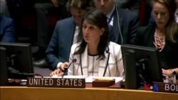 """美國稱安理會制止加沙地帶暴力提案""""一邊倒"""""""