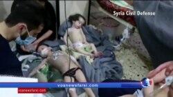 """پرزیدنت ترامپ: روسیه و جمهوری اسلامی ایران برای حمایت از اسد"""" حیوان"""" مسئول هستند"""