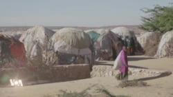 Le changement climatique fragilise les femmes au Somaliland