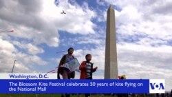 Thousands Participate in Blossom Kite Festival