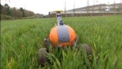 Robots para el futuro de la agricultura