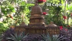 Washington Monuments Bloom at Botanic Garden