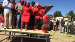 MDC-T Activists Mobilizing Youth Voters in Harare