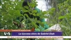 Des jeunes sous le charme de projets agricoles au Cameroun