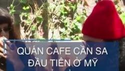 Quán cafe cần sa đầu tiên ở Mỹ mở cửa