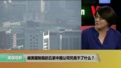 时事看台:被美国制裁的五家中国公司究竟干了什么?