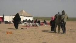الہول کیمپ میں مقیم 65 ہزار خواتین اور بچے