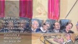 Los alegatos en la Corte