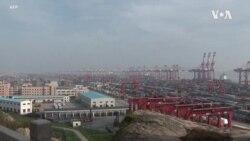 調查:中國出口增長9月份可能放緩