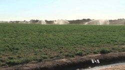 California's Water System Not Created To Handle Current Drought