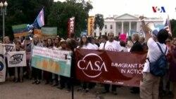 ABŞ Senatı immiqrasiya reformu ilə bağlı müzakirələri rədd edir
