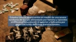 Punto de Vista: Addressing the Drug Epidemic