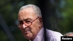 Глава демократического большинства в Сенате Чак Шумер (архивное фото)