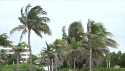 Ураган «Matthew»: ситуация в Майами