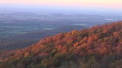 Gorgeous Fall Leaves Unfold Along Virginia's Blue Ridge Parkway