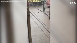 Person Takes a Dip in Flood Waters in Virginia