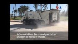 Se inician los trabajos de limpieza en Miami Beach