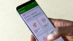 Une startup camerounaise aide les éleveurs à détecter les maladies chez les animaux