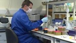 Третья фаза испытания вакцин и миллиардные инвестиции