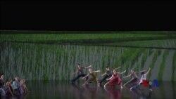 云门舞集《稻禾》献演肯尼迪艺术中心