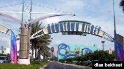佛羅里達州重新開放的迪士尼世界。