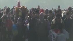 德州取消對安置敘難民計劃的司法挑戰