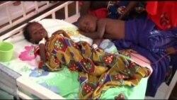 مرگ سالانه ۶۰۰ هزار نفر در اثر مالاریا