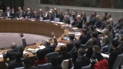 International Community Backs Syrian Peace Process