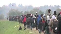 歐盟計劃 設立十萬個接收移民中心