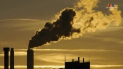 Կլիմայական փոփոխության դեմ չպայքարելու դեպքում Երկիրը կգնա դեպի կործանում
