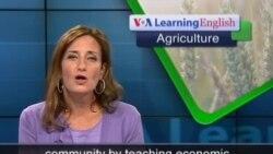 Anh ngữ đặc biệt: Urban Farms (VOA)