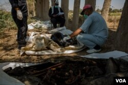 A doctor examines bodies that were found in a newly-discovered mass grave on the outskirts of Raqqa, Syria, Sept. 1, 2019. (Yan Boechat/VOA)