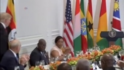 US President Donald Trump Shares Lunch with Africa's Leaders