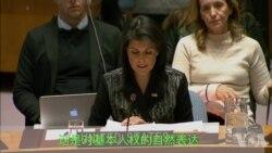 """美国驻联合国代表黑利发言表示:""""伊朗人民的声音应该被听到。"""""""